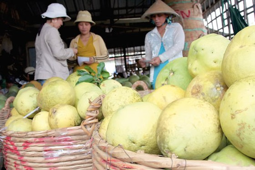 Giữ thị trường xuất khẩu nông sản ảnh 1