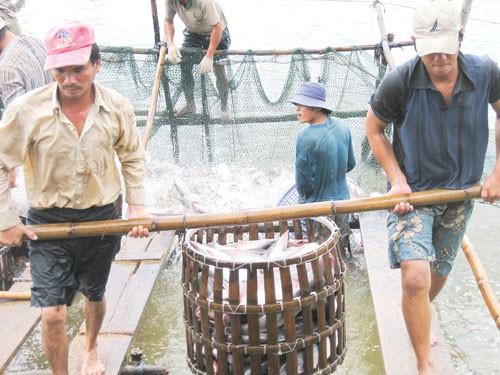 XK thủy sản: Nỗ lực trong thế khó ảnh 1
