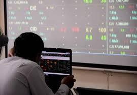 Nhà đầu tư lựa chọn cổ phiếu nào? ảnh 1
