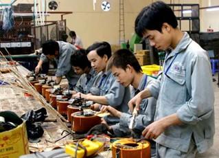 TPHCM: Đào tạo 28.000 lao động nông thôn/năm ảnh 1