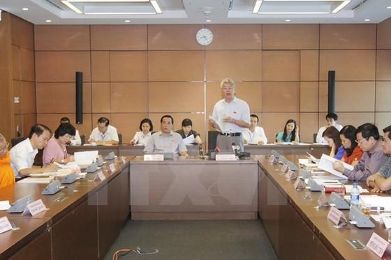 Quốc hội thảo luận tại tổ dự án luật phí và kế toán ảnh 1