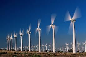 TPHCM: Phát triển điện gió tại Cần Giờ ảnh 1