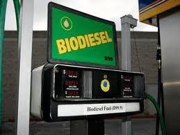 EU áp thuế phá giá diesel sinh học Argentina, Indonesia ảnh 1