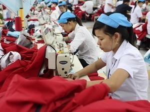 Xuất khẩu dệt may đạt kỷ lục 11,7 tỷ USD ảnh 1