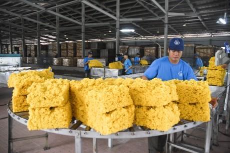 10 tháng xuất khẩu cao su gần 1,3 tỷ USD ảnh 1
