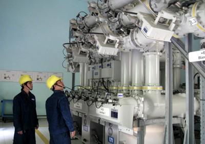 EVN HCMC đảm bảo cấp điện những ngày Tết ảnh 1
