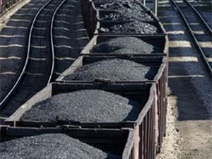 Nhập 9.500 tấn than đầu tiên từ Indonesia ảnh 1