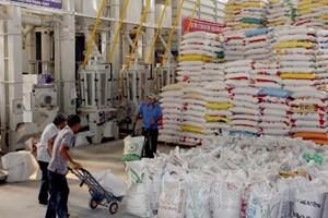 XK gạo 2014 có thể đạt 7 triệu tấn ảnh 1