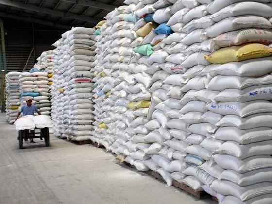 Xuất khẩu 3,2 triệu tấn gạo trong 6 tháng ảnh 1