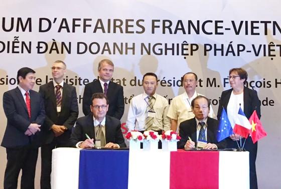 Tầm cao mới quan hệ hợp tác TPHCM - Pháp ảnh 4