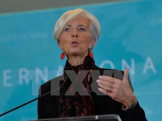 Khởi động cuộc đua chức TGĐ IMF ảnh 1
