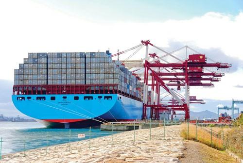 Logistics: Ưu thế doanh nghiệp ngoại ảnh 1