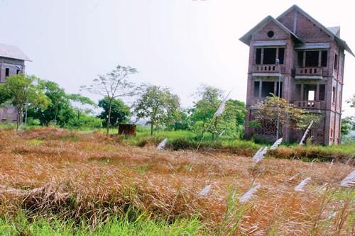 Cận cảnh thị trường (B2): Mê Linh-đại đô thị hoang vu ảnh 1