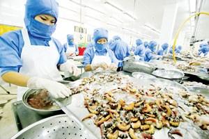 Việt Nam - EU: Vì sao chưa đạt được thỏa thuận FTA? ảnh 1