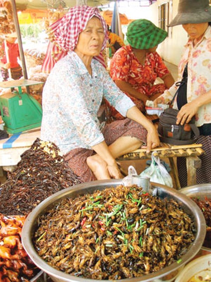 Chợ côn trùng ở Campuchia ảnh 1