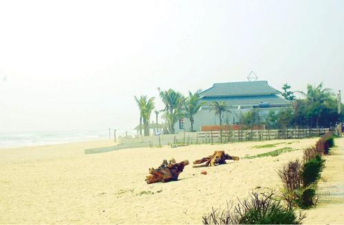 Miền Trung: Xây resort tàn phá rừng phòng hộ ảnh 1