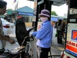 Thanh tra hoàn thuế tạm nhập, tái xuất xăng dầu ảnh 1
