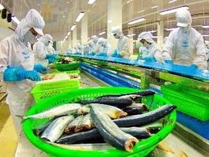 Hoa Kỳ ra phán quyết bất lợi cho cá tra, ba sa ảnh 1