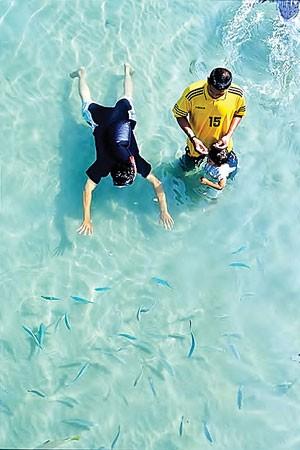 Bí quyết môi trường biển ảnh 1