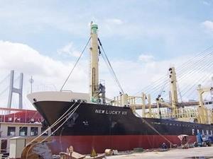 Vinashin xuất khẩu tàu hàng 6.850 tấn ảnh 1