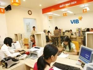 PNB, VIB bán cổ phần cho nhà đầu tư ngoại ảnh 1