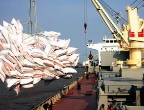 7 tháng xuất khẩu gạo đạt hơn 2 tỷ USD ảnh 1