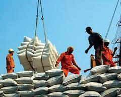 Phấn đấu xuất khẩu 6 triệu tấn gạo/năm ảnh 1