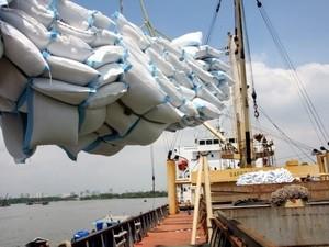 Năm 2011 VN có thể xuất khẩu 7 triệu tấn gạo ảnh 1