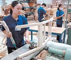 Chính sách hợp lý cho ngành gỗ ảnh 1