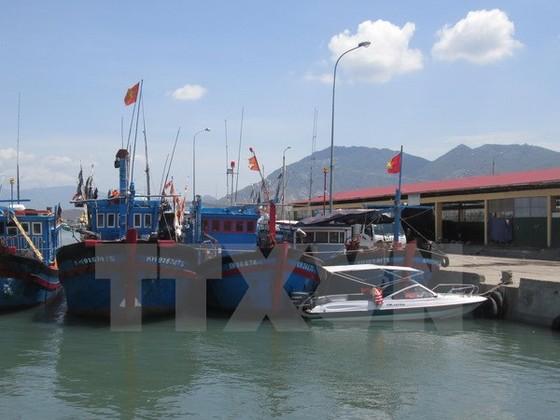 Xây Trung tâm nghề cá Nam Trung bộ làm mô hình điểm ảnh 1