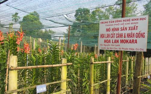 Chuyển dịch cơ cấu nông nghiệp mang lại hiệu quả ảnh 1