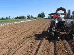 Hoa Kỳ thông qua dự luật nông nghiệp 1.000 tỷ USD ảnh 1