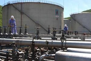 PV Oil đạt mốc 300 triệu tấn dầu thô ảnh 1