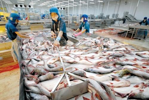 Lao đao xuất khẩu nông thủy sản ảnh 1