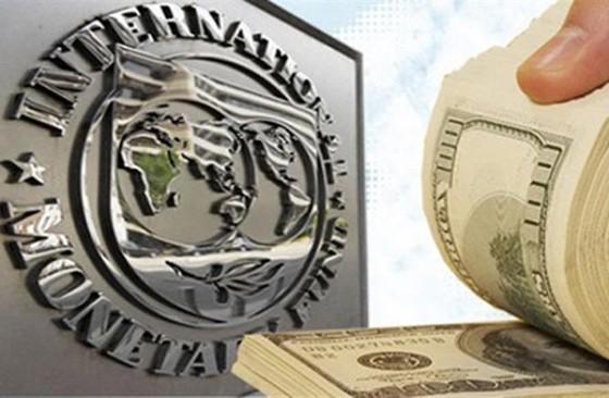 IMF cảnh báo việc vay mượn quá mức ảnh 1
