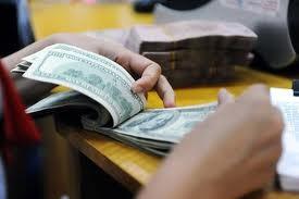 USD chính thức ngược dòng USD tự do ảnh 1