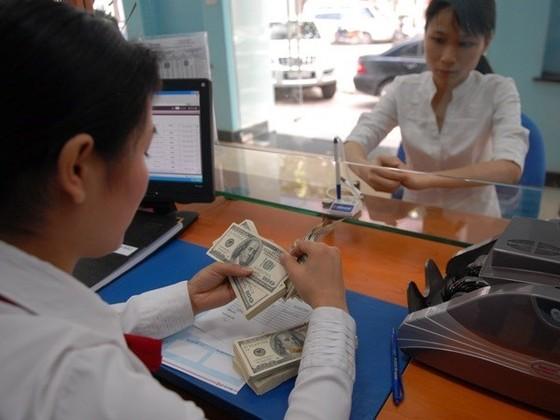 NHNN giao Vụ Chính sách tiền tệ điều hành tỷ giá ảnh 1