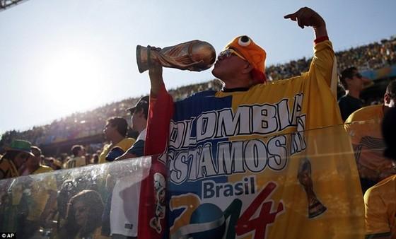 Tiếng vọng Brazil ảnh 1