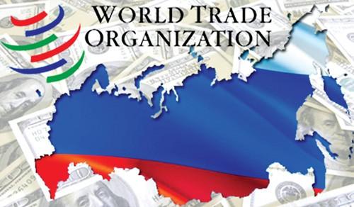 NGA-WTO: Hành trình 18 năm (kỳ 2): Thích nghi WTO ảnh 1