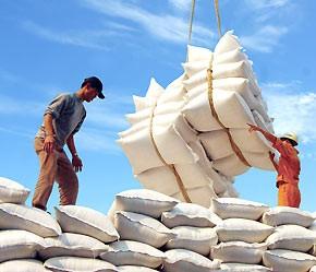Gạo Việt chiếm lĩnh Hồng Công ảnh 1