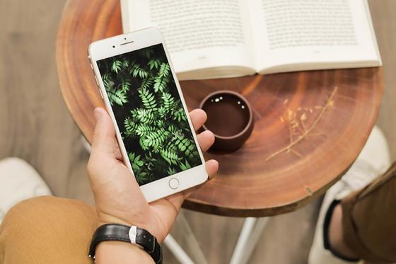 iPhone 7 Plus, 8 Plus và iPhone X hút khách ở phân khúc giá từ 10 triệu ảnh 1
