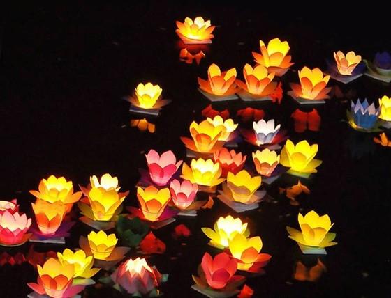 Con đường ánh sáng được kết với 500 bông hồng khổng lồ ở Hội An ảnh 2