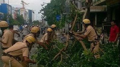 Gió lớn, cây ngã, nhà tốc mái, nhiều người bị thương ảnh 1