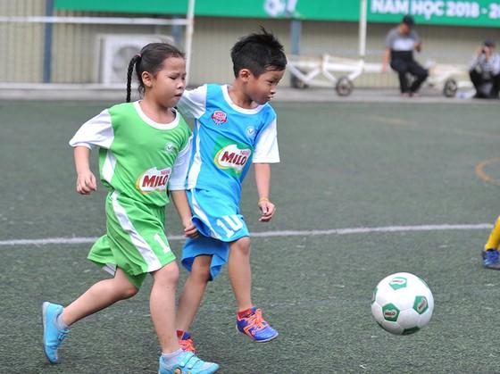 Festival bóng đá học đường TPHCM năm học 2018-2019: 186 đội dự vòng chung kết ảnh 2