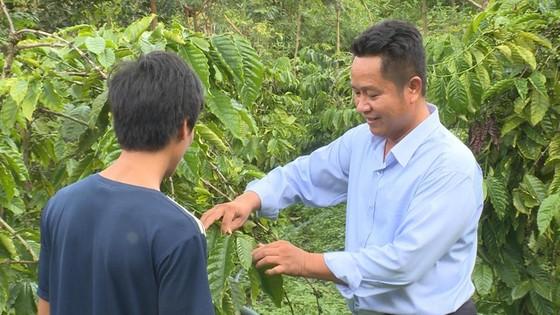 Tiến sĩ Phạm Công Trí hướng dẫn bà con xã Quảng Hoà xử lý sự cố. Ảnh: PHÚC NGUYỄN