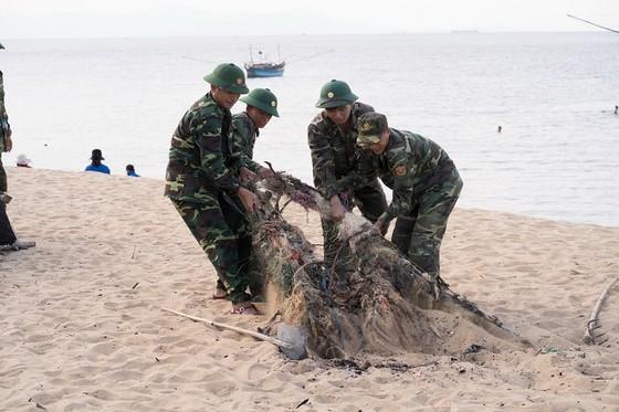 Rác thải được dọn sạch, trả lại vẻ đẹp cho bờ biển Việt Nam ảnh 1