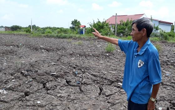 Cà Mau: Lỏng lẻo quản lý đất công, khó khăn xử lý hậu quả ảnh 1