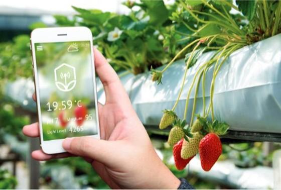 """VNPT Smart Agri  - """"Cánh tay phải"""" của nông dân thời 4.0 ảnh 1"""