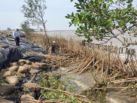 Cà Mau khẩn cấp đầu tư xây kè chắn sóng bờ biển Đông  ảnh 2