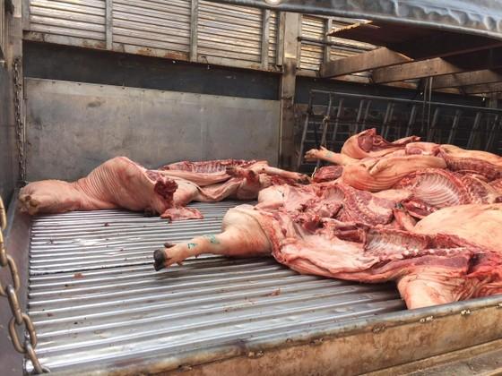 Ngăn chặn kịp thời hơn 1 tấn thịt heo bị lở mồm long móng vào chợ đầu mối ảnh 1